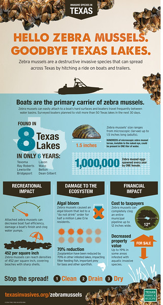 Poster- Hello Zebra Mussels/Goodbye Texas Lakes