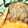 (Fig. 18) Images in Marie Anne Blanchet's hair.
