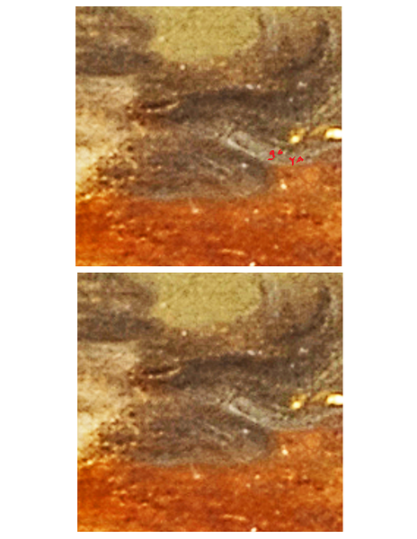 (Fig. 25) Note the small Goya signature highlighted in red. The name Goya is written along the jawline of the reptile which is also the chin of the man in profile. Goya's name is also written behind the eye.