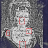 (Fig. 20) A larger half tone image of the inscription showing numbered areas of interesting images. The next four images are numbered enlargements.