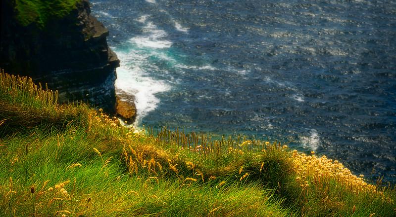 Grass-010.jpg