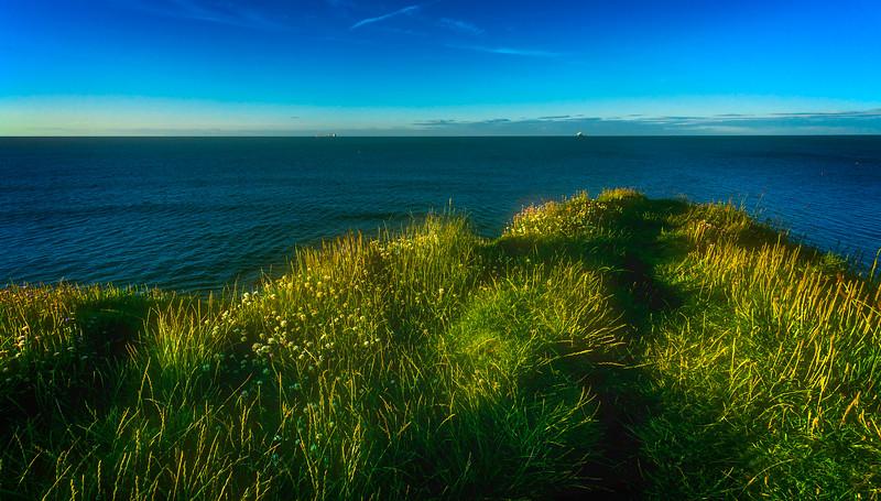 Grass-033.jpg