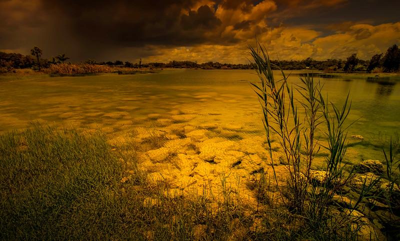 Grass-090.jpg