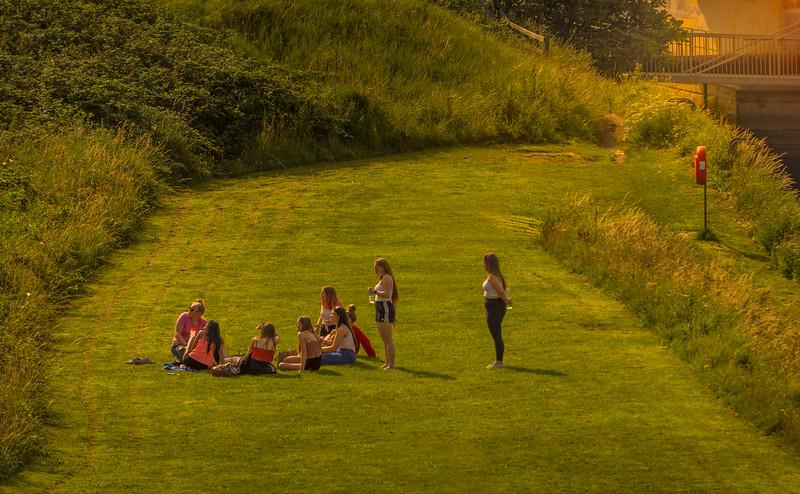 Grass-065.jpg