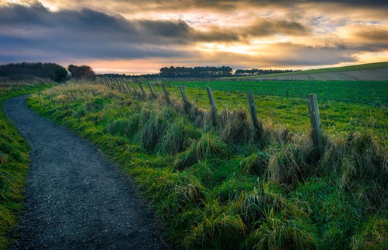 Grass-053.jpg