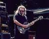 Jerry Garcia performing with the Grateful Dead on May 6, 1989.