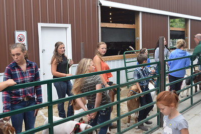 Kullen Logsdon - The Morning Sun Residents gather at the livestock sale at the Gratiot County Fair For Youth on Aug. 4, 2017 at the Gratiot County Fairgrounds
