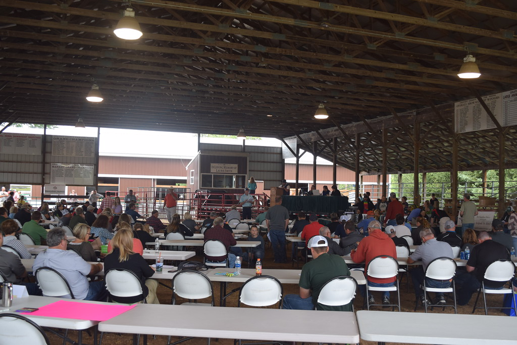 . Kullen Logsdon - The Morning Sun Residents gather at the livestock sale at the Gratiot County Fair For Youth on Aug. 4, 2017 at the Gratiot County Fairgrounds