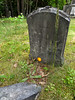 South Yard Cemetery, Wilton NH - I sighted on this stone for it's proximity to the footstone and because of the carved rose on top - then I read the inscription.  Wow.  Ick.