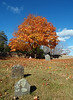 Uphill with foliage - Chester Village Cemetery, Chester NH<br /> Nov 2009
