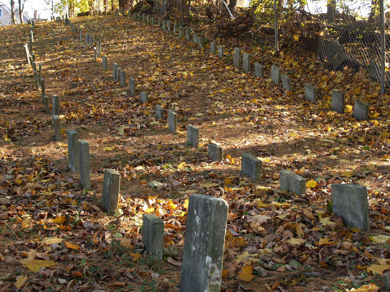 Looking up the hill at the Methuen Pet Cemetery<br /> November 2005
