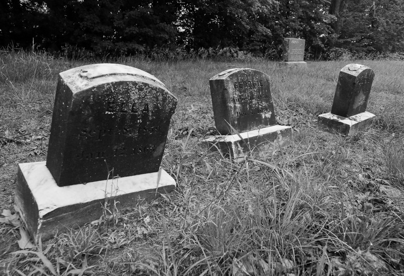 Merrill Cemetery, Manchester NH - Etta 9/8/1859 - 1/12/1862, Georgie 6/16/1856 - 12/7/1861, Jimmie 9/10/1852 - 12/5/1861.  I liked the way the stones seem to sway to and fro.