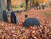 Reburied<br /> Old Francestown Cemetery awash in sugar maple leaves.