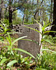 Ordione Point Cemetery - could be NH's oldest, dating from the early 1600s. Many stones are rough and uncut.  It's a beautiful location.