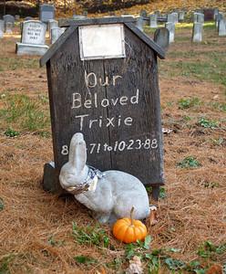 Trixie the bunny. Pet Cemetery, Methuen MA November 2005