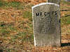 Methuen Pet Cemetery<br /> Nov 2005