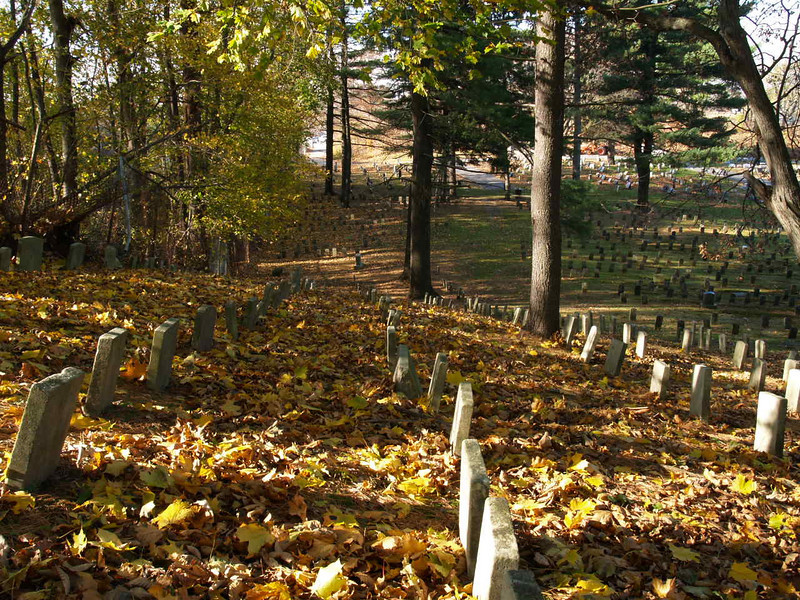 One corner of a large pet cemetery in Methuen, MA.  It's been used since just prior to WW2 (as far as I could tell from some markers) and is still in use today.  A touching tribute to the importance of our animal companions.<br /> November 2005