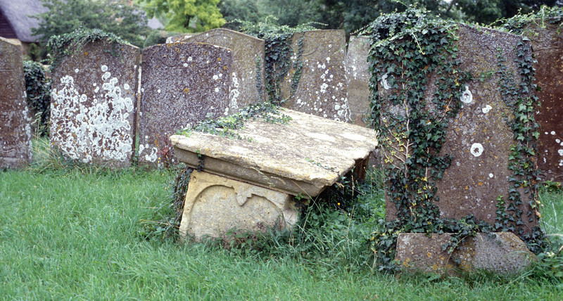 Graves with ivy at Tredington, England<br /> 2004