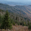What Color Remains from Clingmans Dome