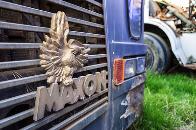 Maxon Eagle badge