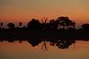 Okavango Sunset