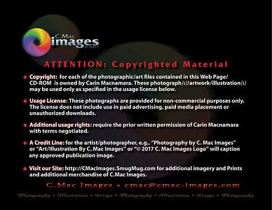 CMACphotoCopyright2017