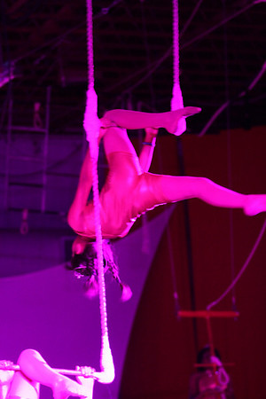 Circus 2010 - swing