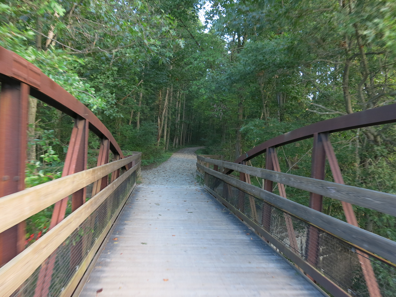 The trail at Ferncliff Peninsula