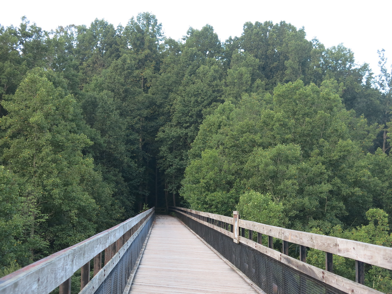 GAP trail heading south into the Ferncliff Peninsula from High Bridge