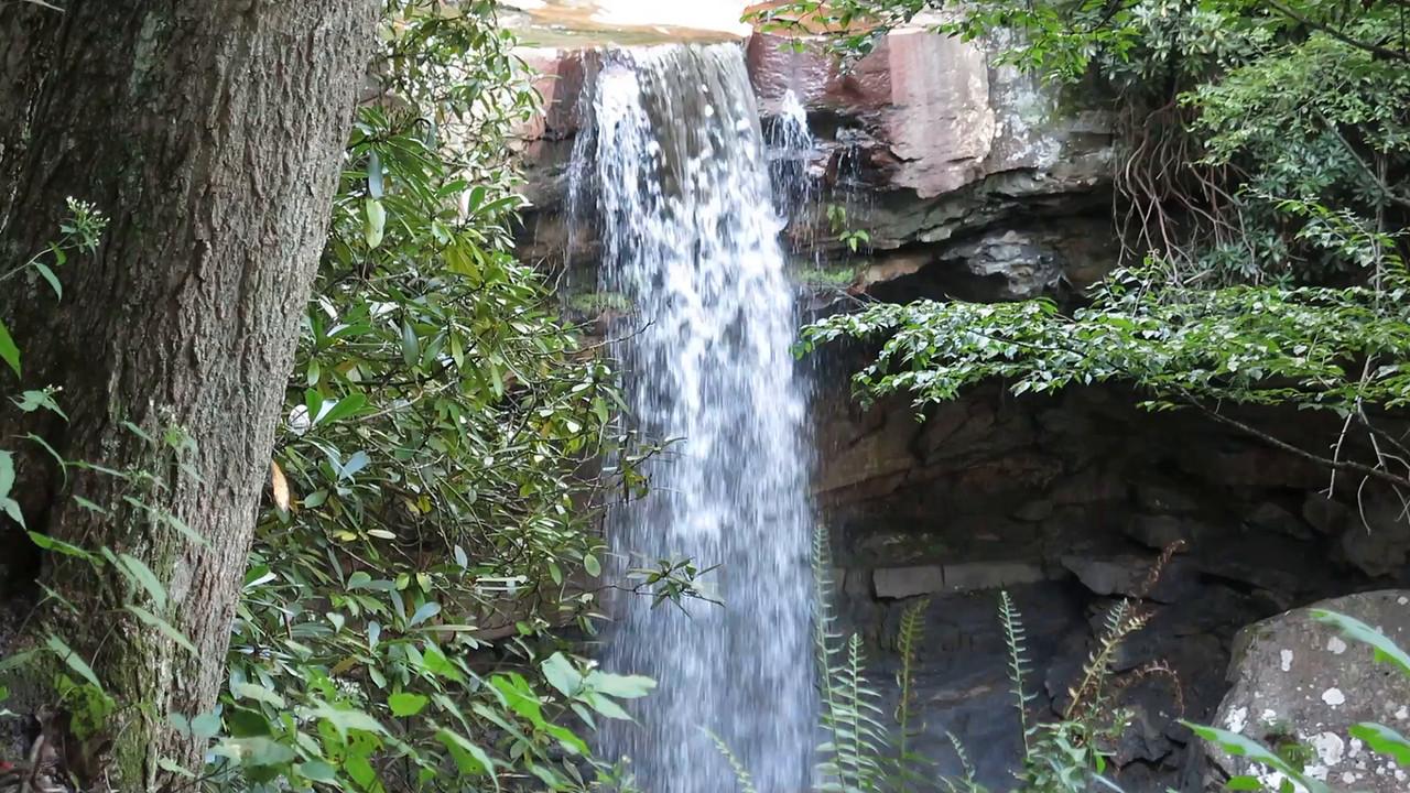 Video:  Cucumber Falls