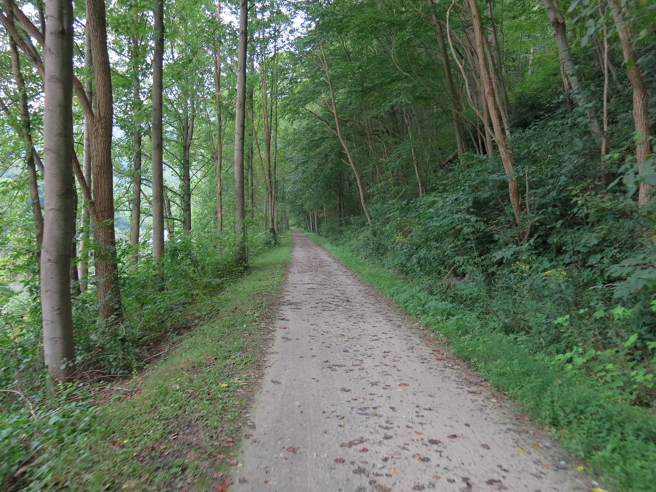The trail and its packed limestone surface