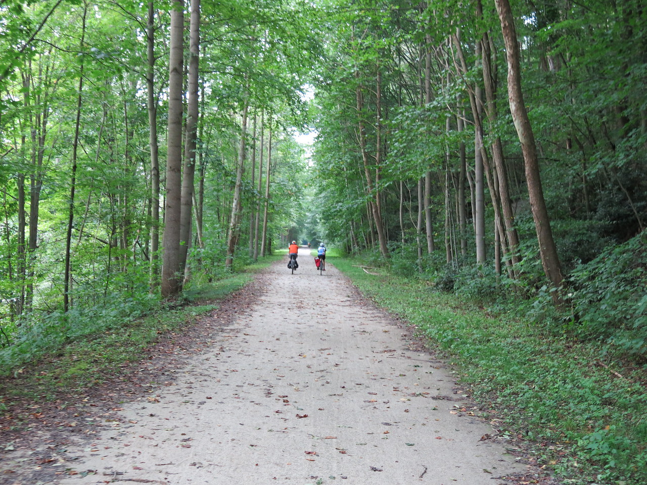 The trail continues through Ohiopyle State Park