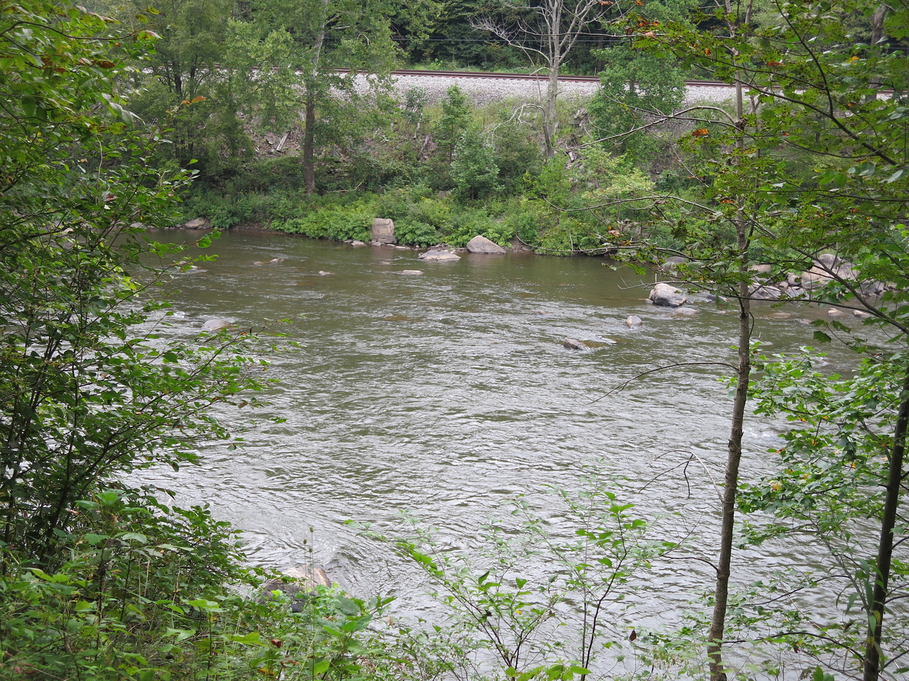The Yough River and the activce CSX rail line on the opposite side of the river