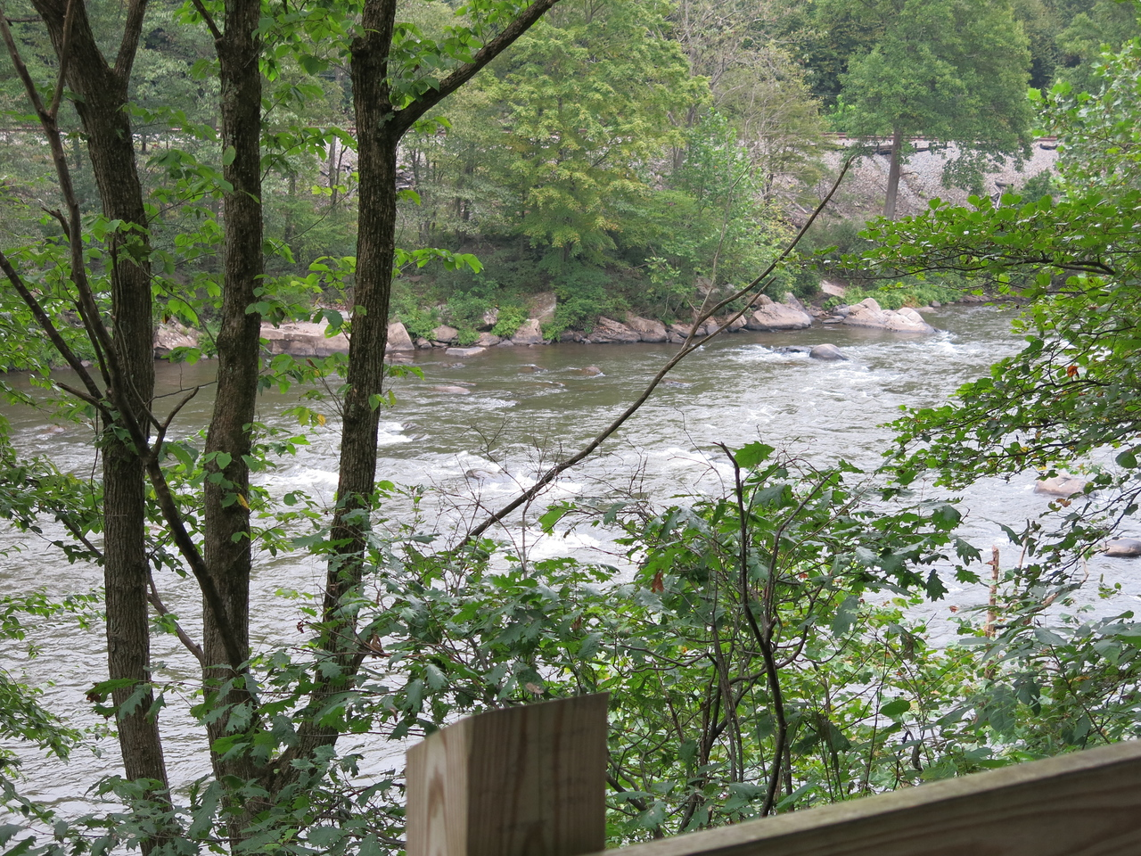 Whitewater on the Yough