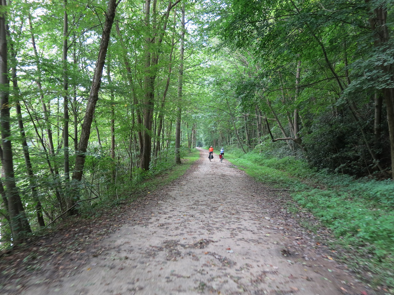 The trail continues to follow the Yough from Ohiopyle to Confluence