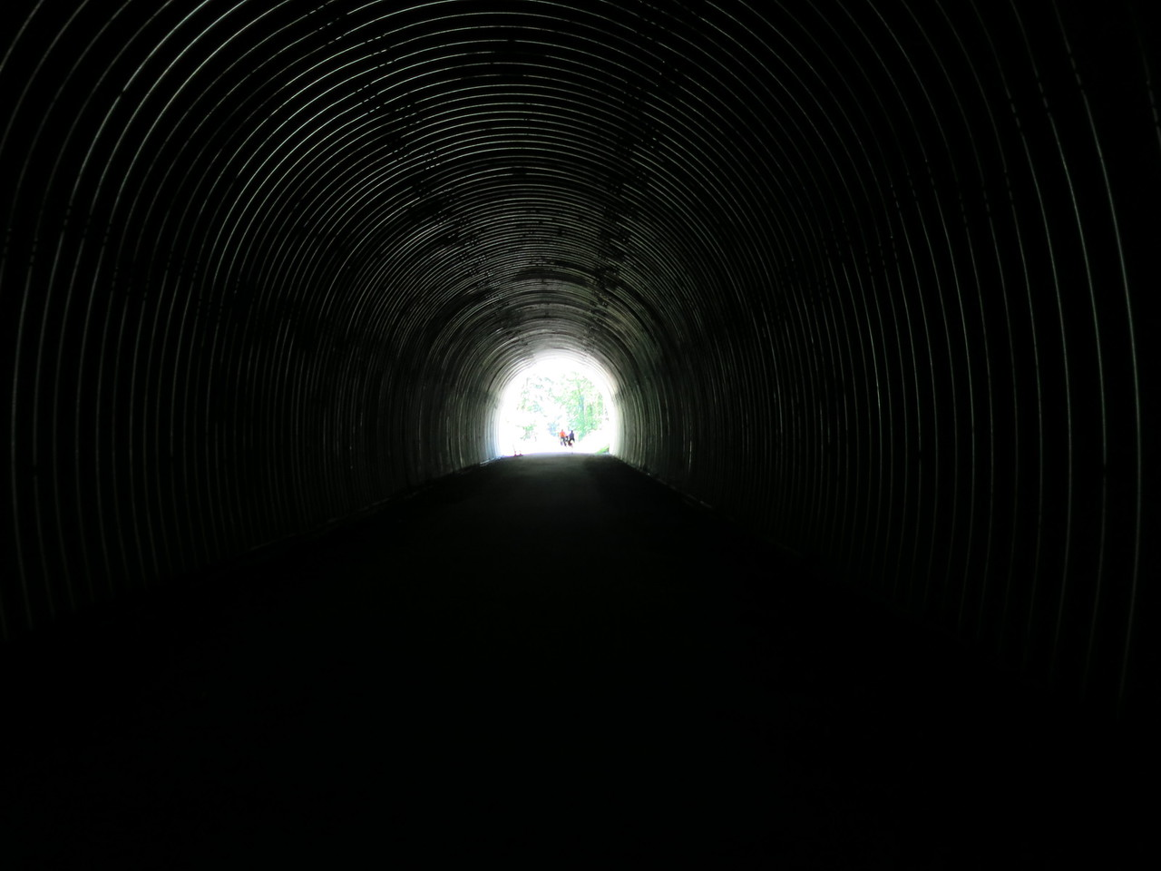 Inside the tunnel looking out