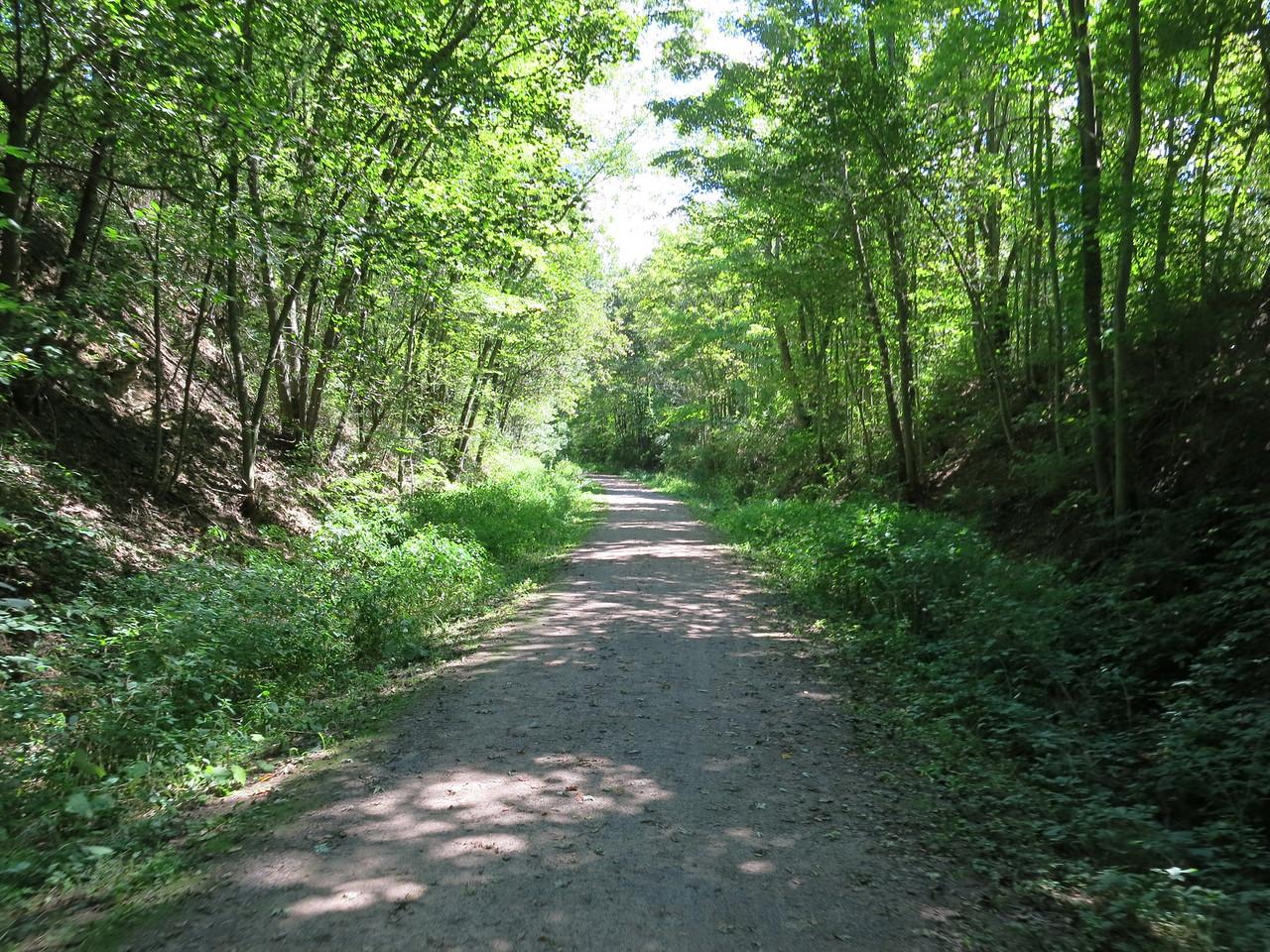 The trail follows a cut through the hillside