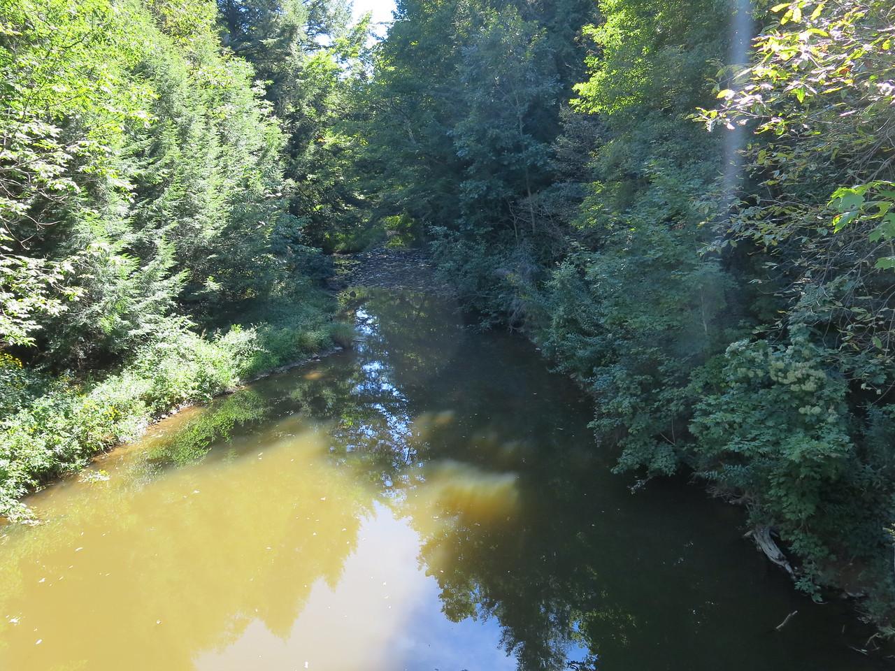 Nondescript creek beneath a bridge