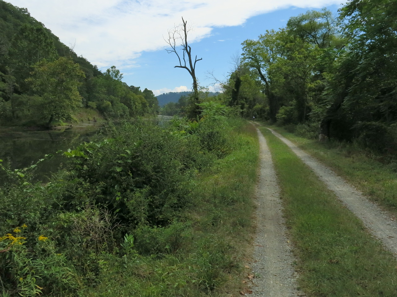 Canal on the left and towpath on the right