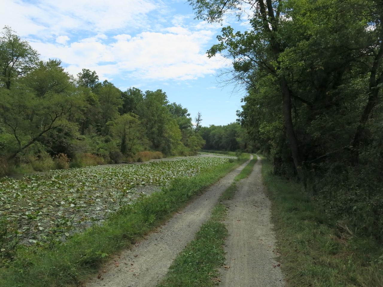 Fetching Bike path