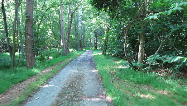 Video, Day 5 C&O Canal - Towpath at about MP 53