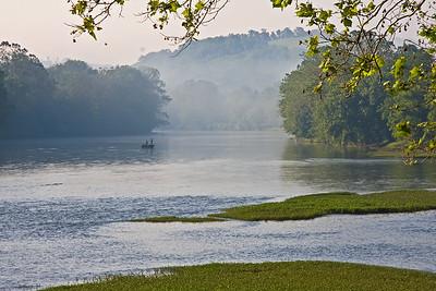June early morning, downstream of Whitsett