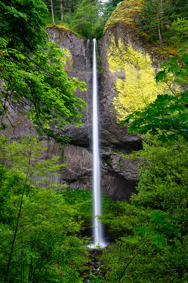 Latourell Falls; Columbia River Gorge; Oregon; USA