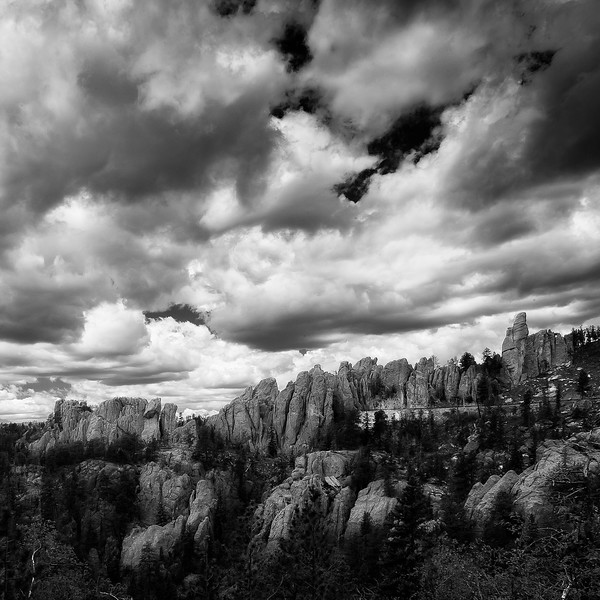 Custer State Park; Black Hills; South Dakota; USA