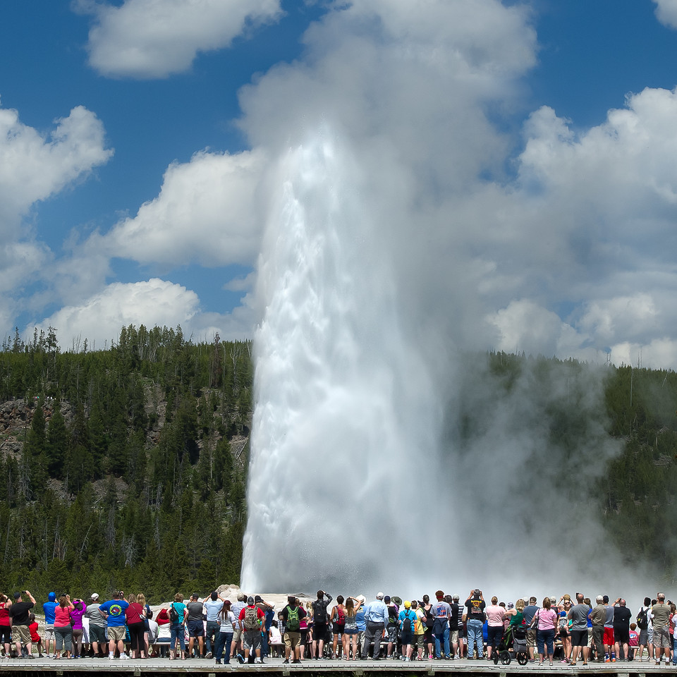 Old Faithful; Geyser; Yellowstone National Park; Wyoming; USA