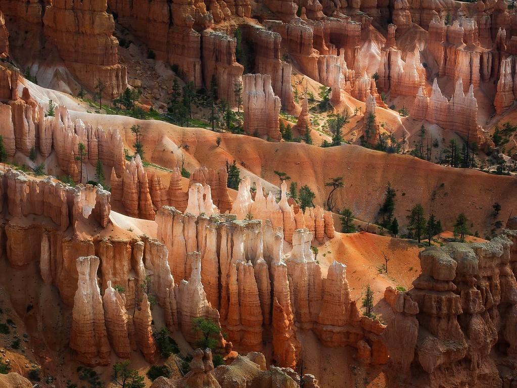 Bryce Canyon National Park; Utah; USA