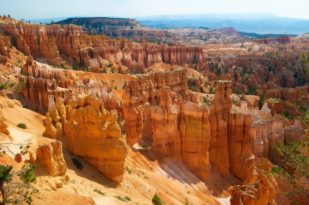 Bryce Canyon National Park; Utah; USA