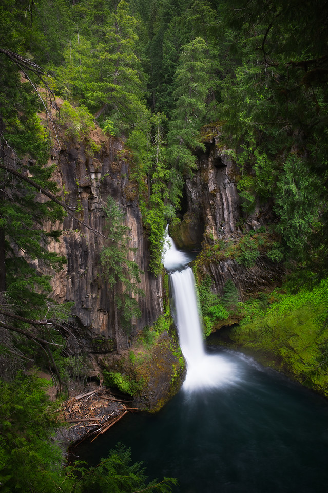 Toketee Falls; Umpqua National Forest; Oregon; USA