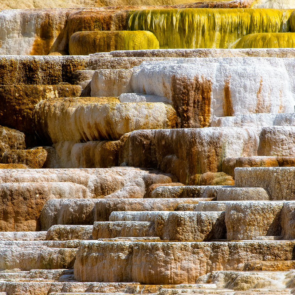 Mammoth Hot Springs; Yellowstone National Park; Wyoming; USA