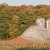 Record-Eagle/Douglas Tesner<br /> A barn and silos sit near a corn field along Armstrong Road as fall colors begin to pop.
